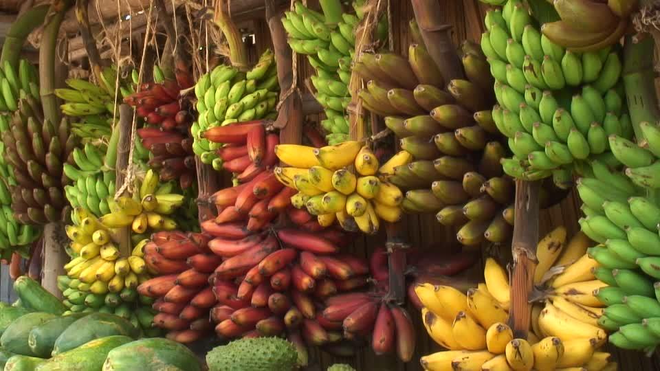Banane na Zanzibaru